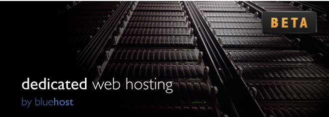 Web Hosting Report