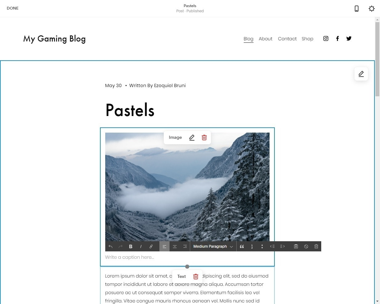 Squarespace - blog post editor