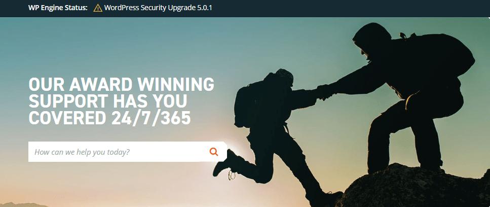 wpengin-support2