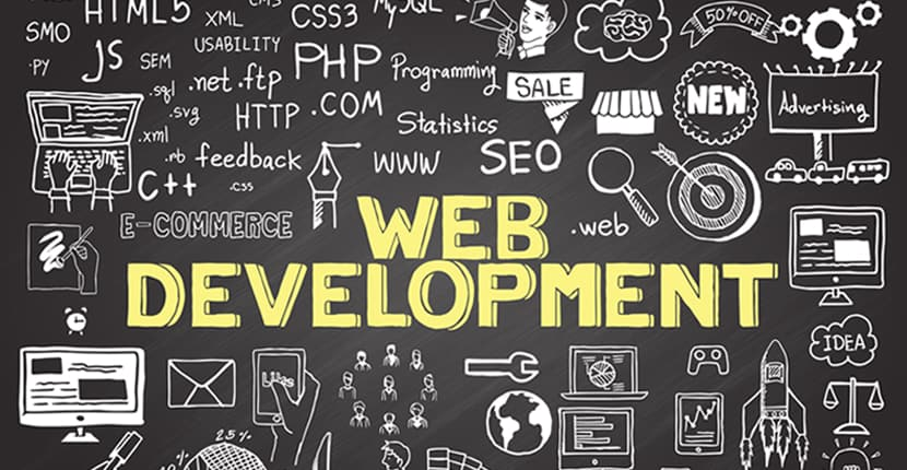 How Much Does it Cost to Hire a Professional Website Developer?