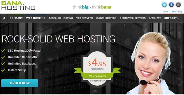 BanaHosting Main page