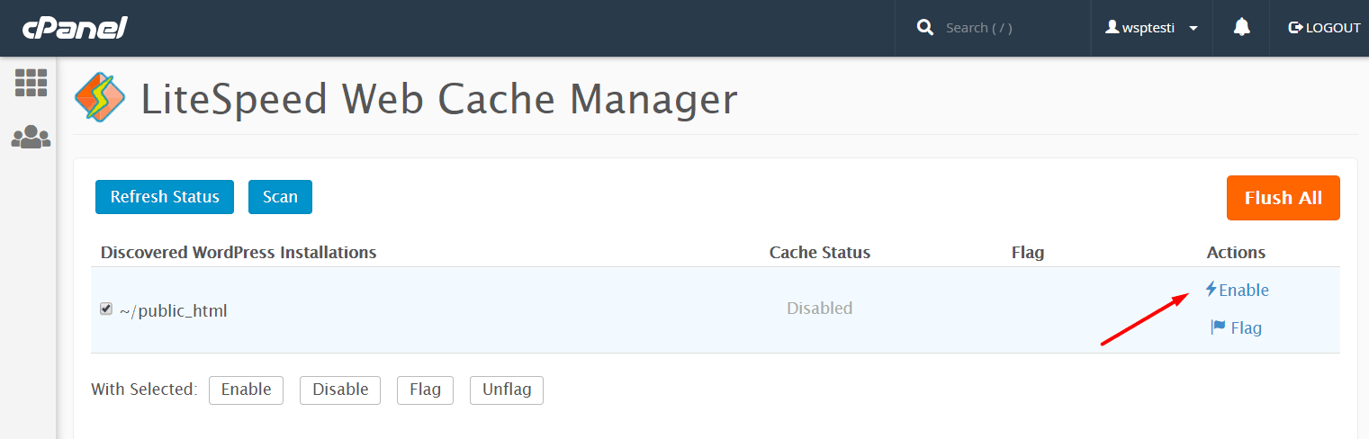 InterServer's LiteSpeed caching on cPanel