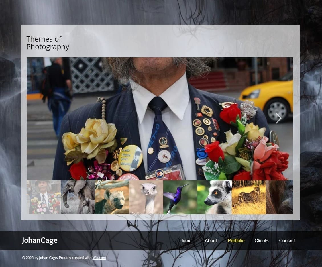 6 Best Wix Photography Website Templates (+3 Worst)-image5