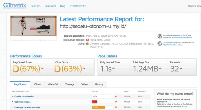 Hasil cek kecepatan website