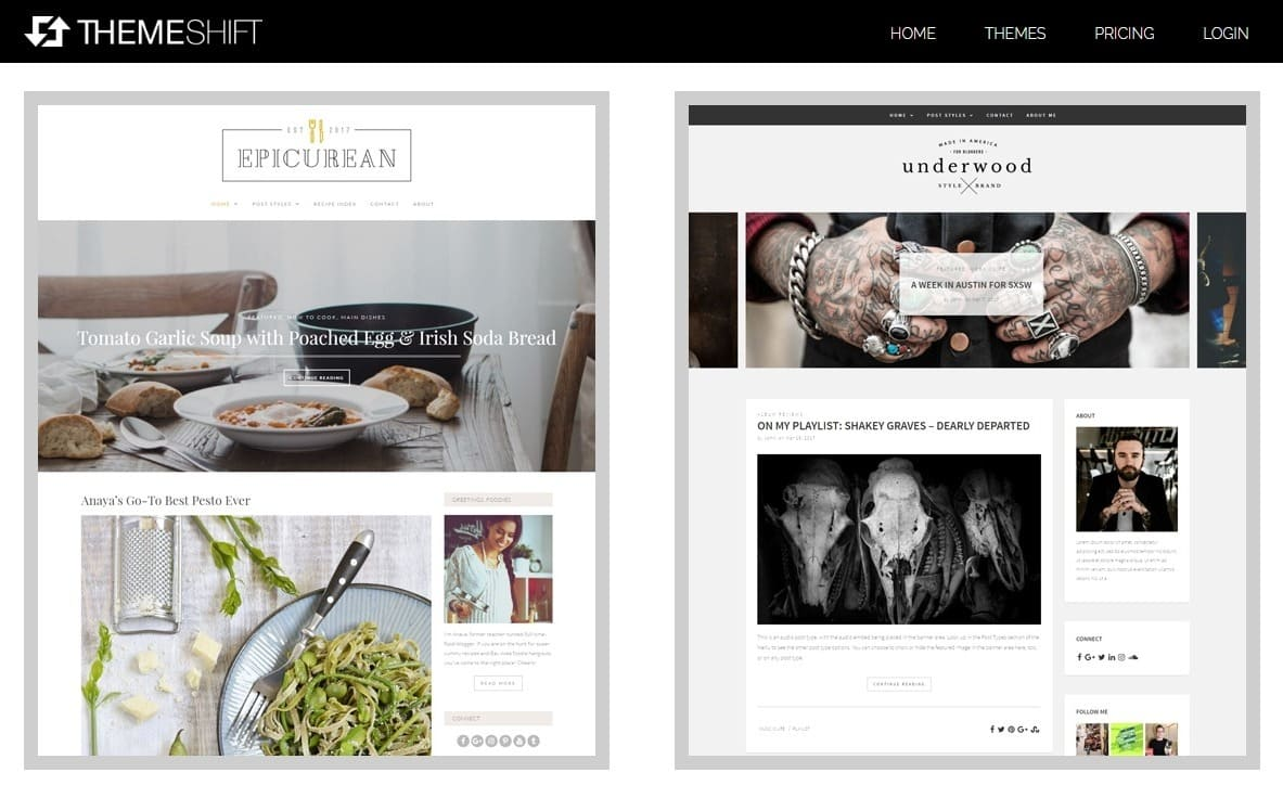 5 Top WordPress Theme Marketplaces-image3