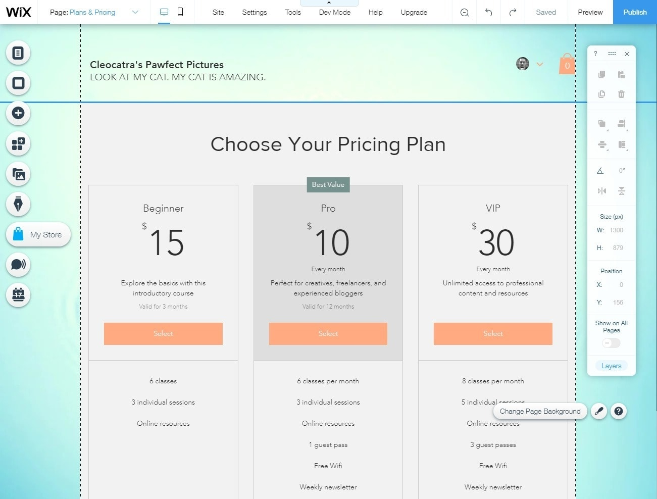 Adding paid subscription plans to your Wix website