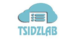Tsidzlab