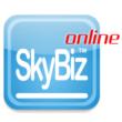 Skybiz logo square
