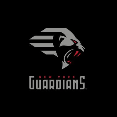 Football team logo - New York Guardians