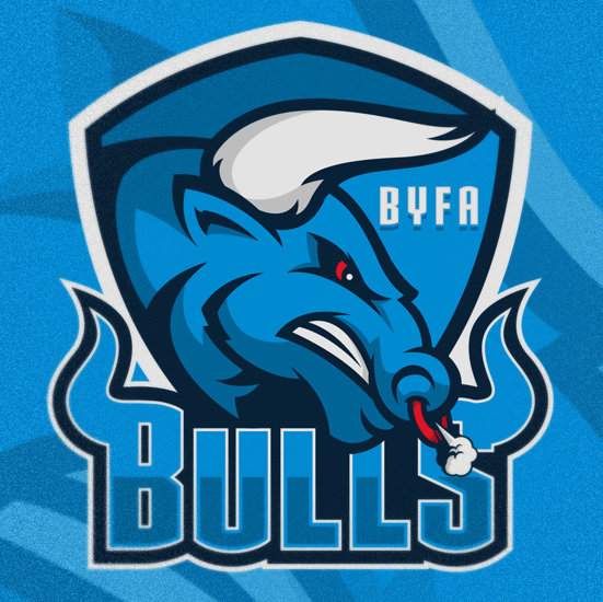 Football team logo - BYFA Bulls
