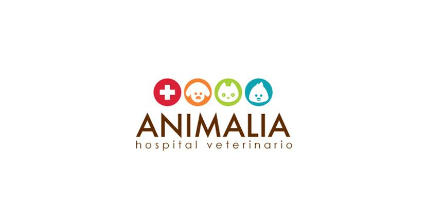 Medical logo - Animalia
