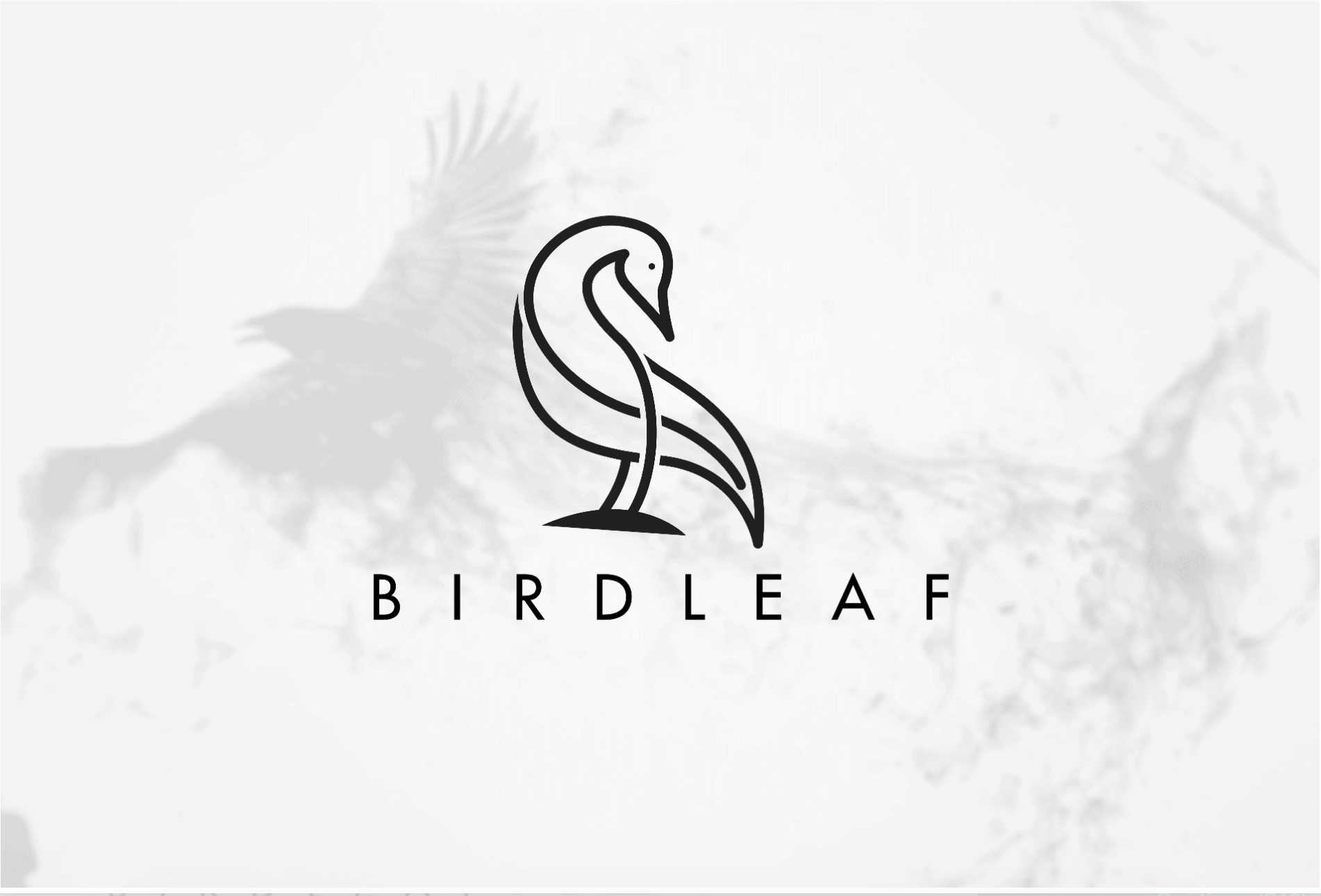Custom logo created on Fiverr - BirdLeaf