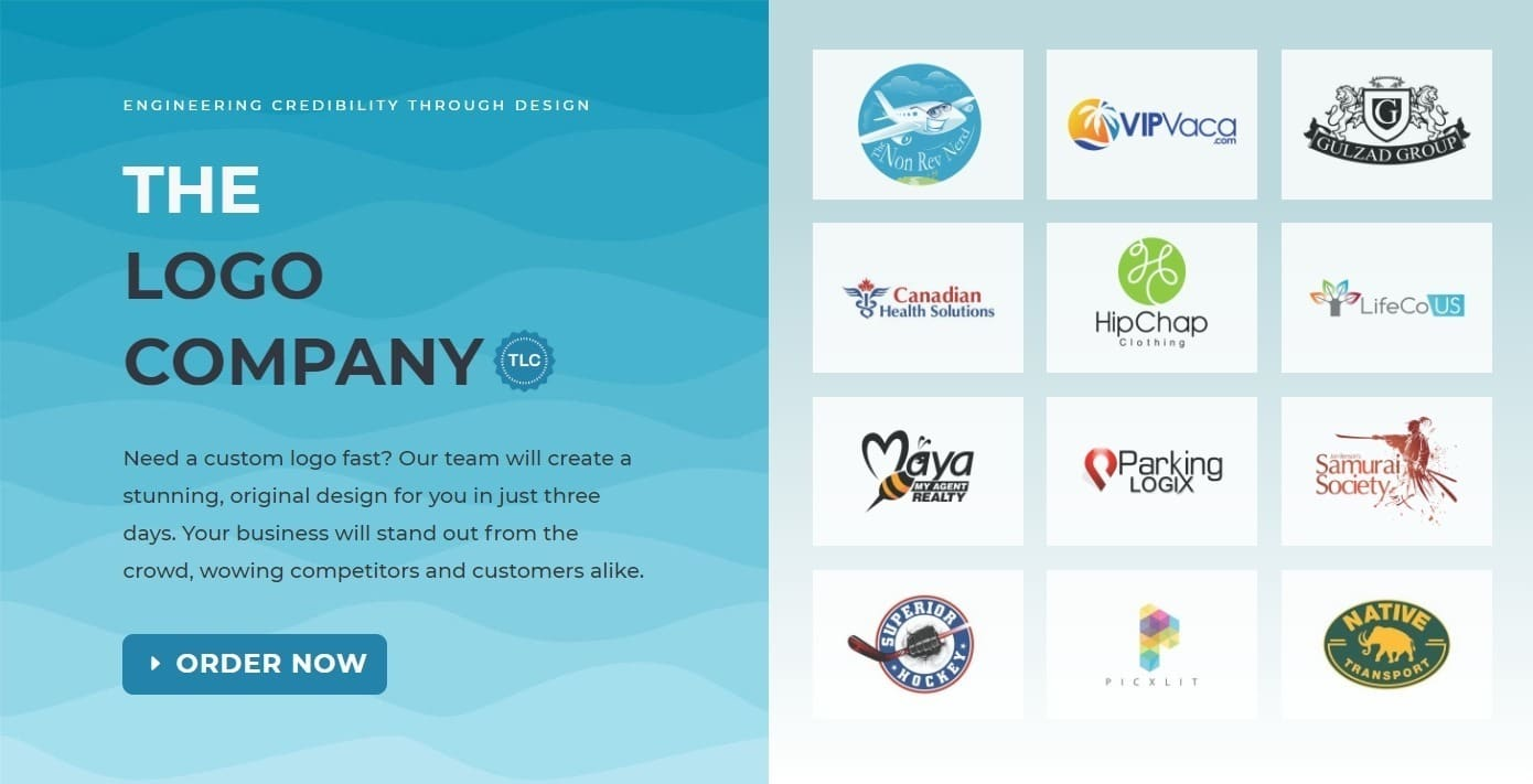 The Logo Company-overview1