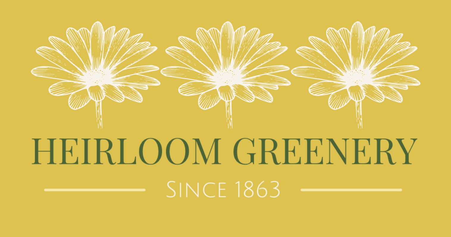 Vintage logo made with DesignEvo - Heirloom Greenery