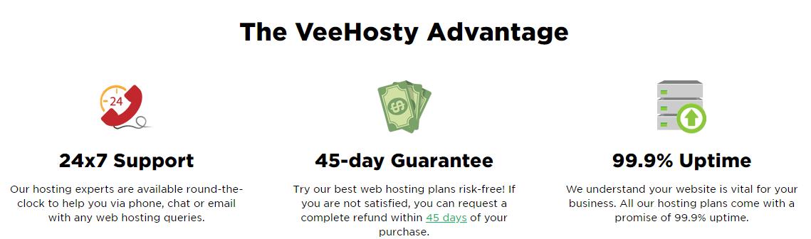 VeeHosty