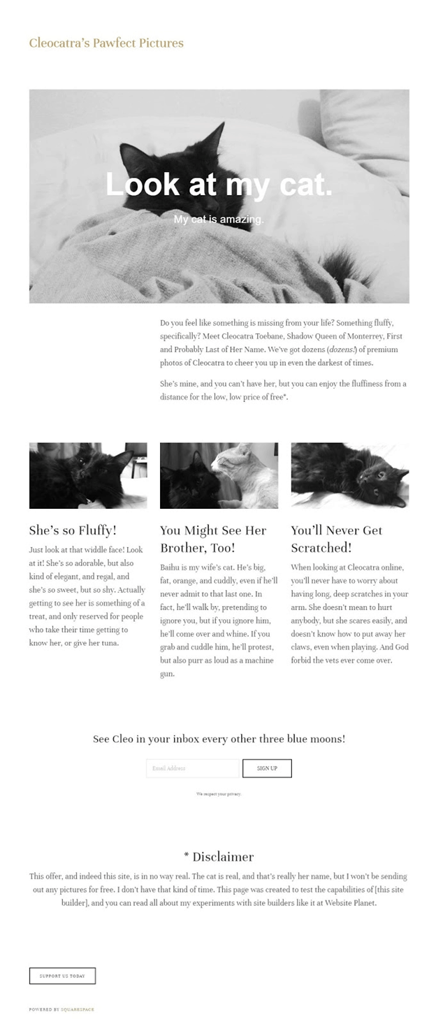 squarespace-page
