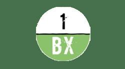1BX.host