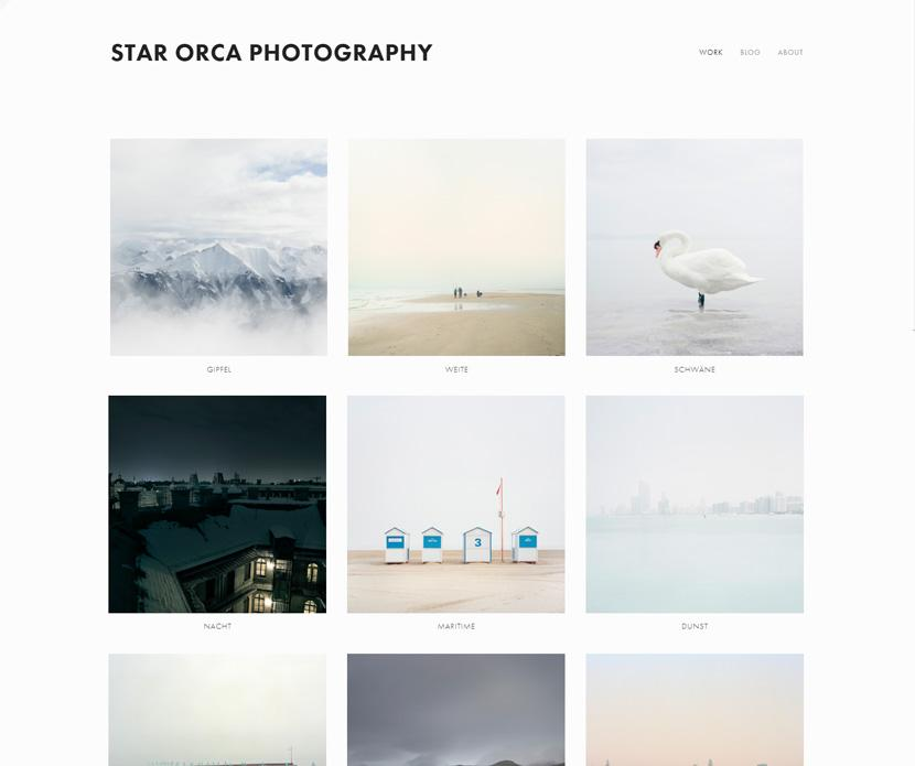 Squarespace Avenue template