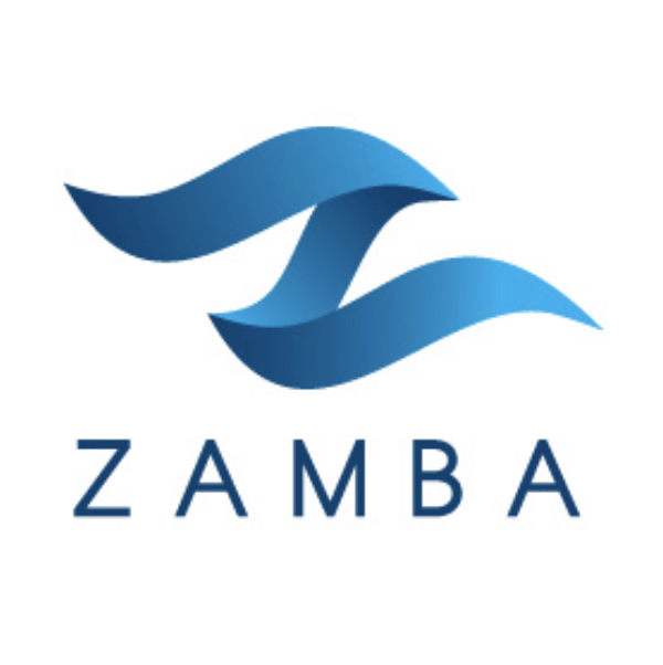 Letter logo - Z - Zamba