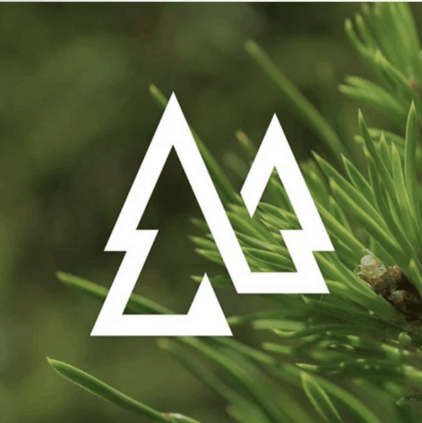 Nature logo - pine trees
