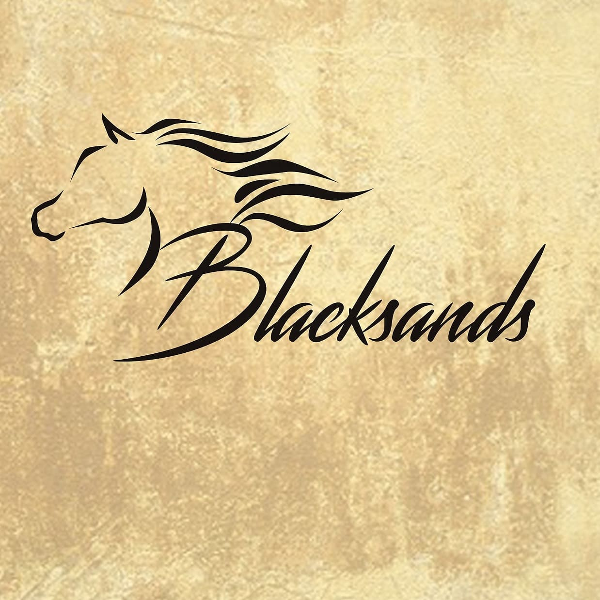 Horse logo - Blacksands