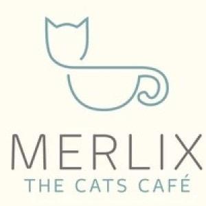 Cat logo - Merlix