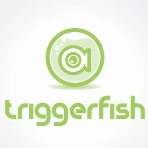 Fish logo - triggerfish