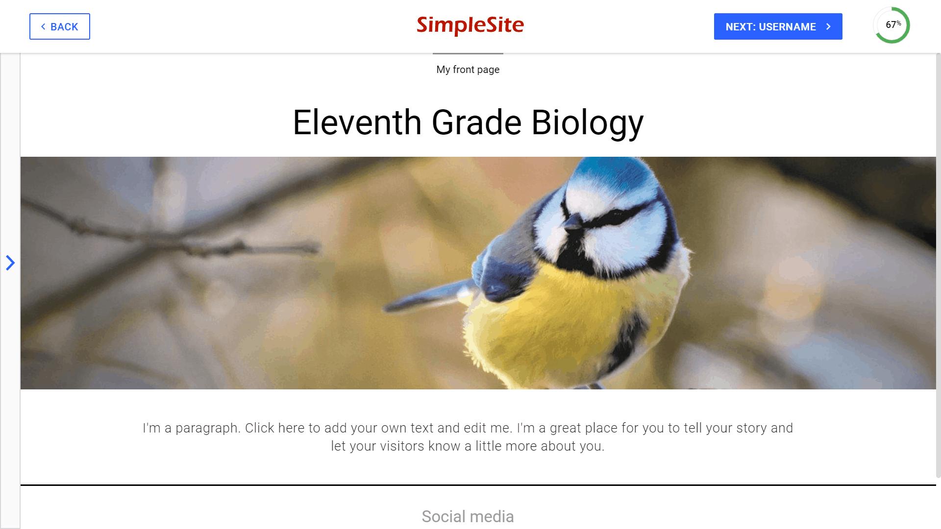 SimpleSite website editor