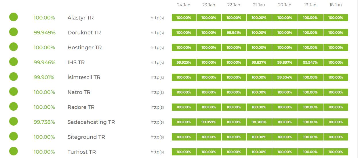 Türk hosting şirketlerinin performansları