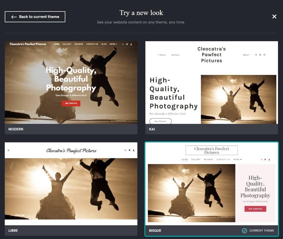 GoDaddy Website themes