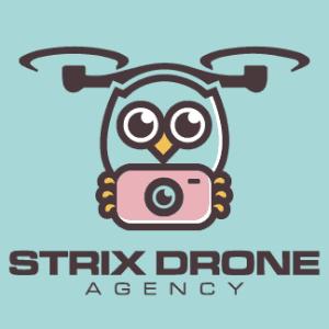 Drone logo - Strix Drone