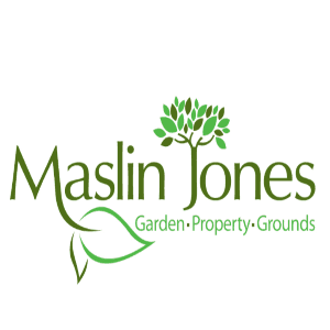 Tree logo - Maslin Jones