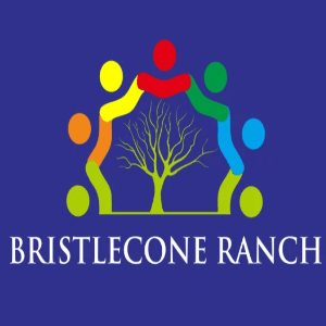 Tree logo - Bristlecone Ranch