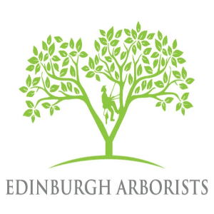 Tree logo - Edinburgh Arborists