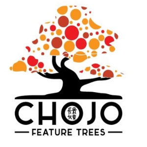 Tree logo - Chojo
