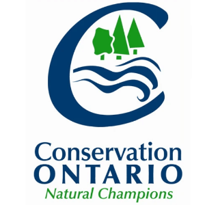 Wave logo - Conservation Ontario