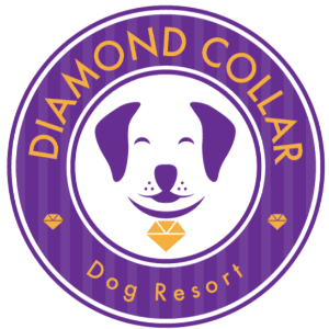 Diamond logo - Diamond Collar Dog Resort
