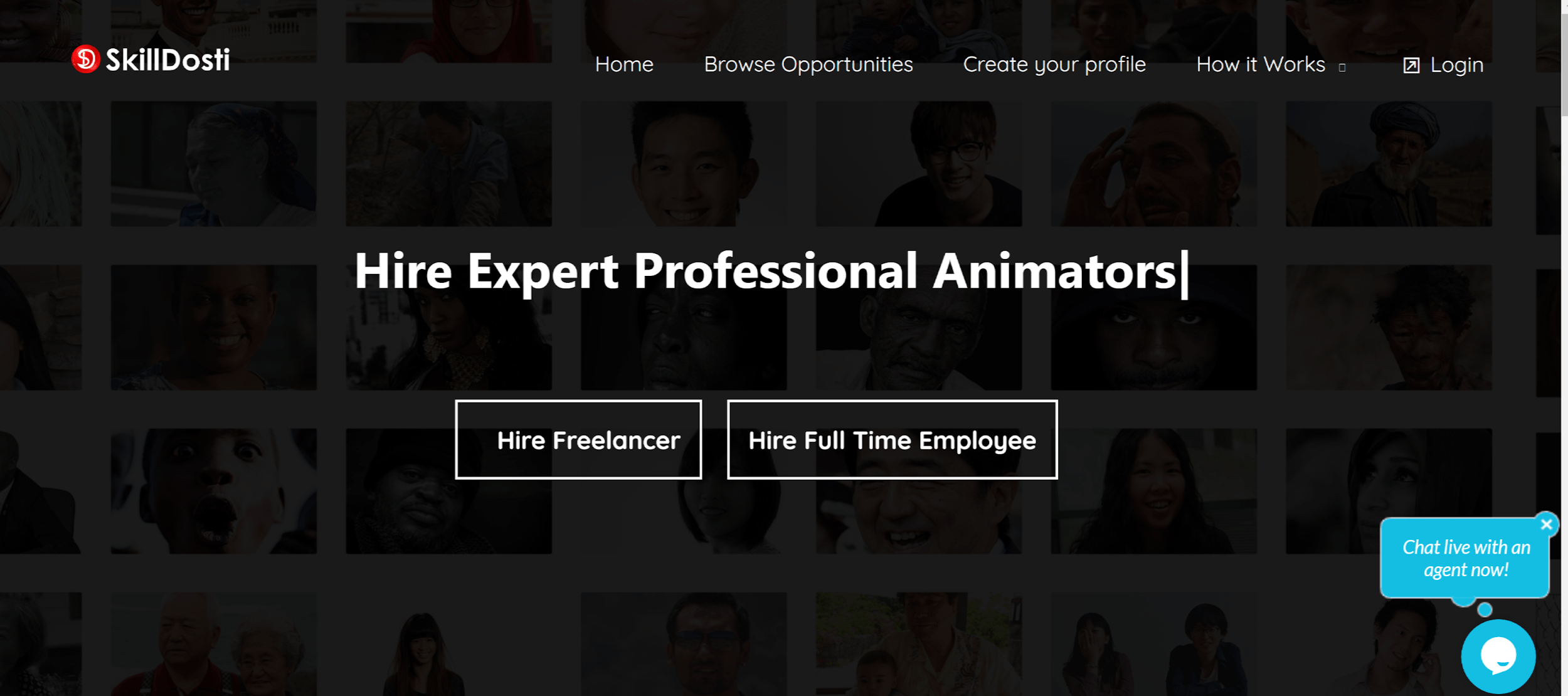 Skilldosti screenshot - homepage