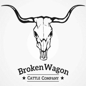 Skull logo - Broken Wagon