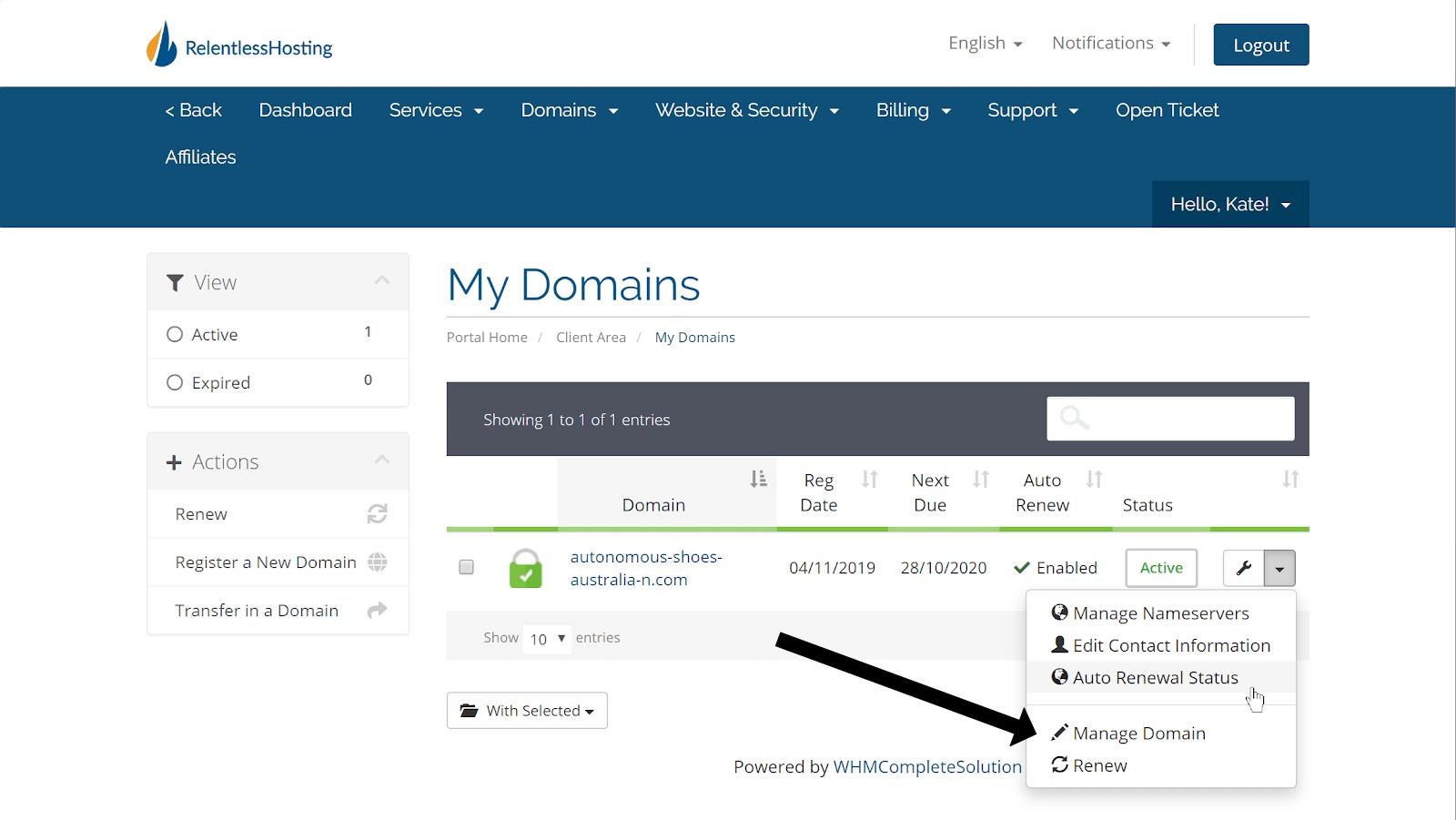 the domain name dashboard