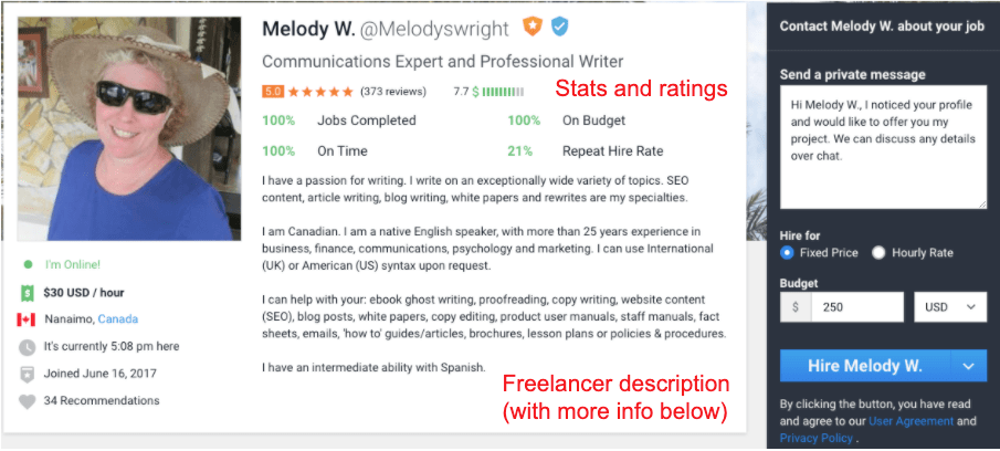 An example of a freelancer profile on Freelancer.com