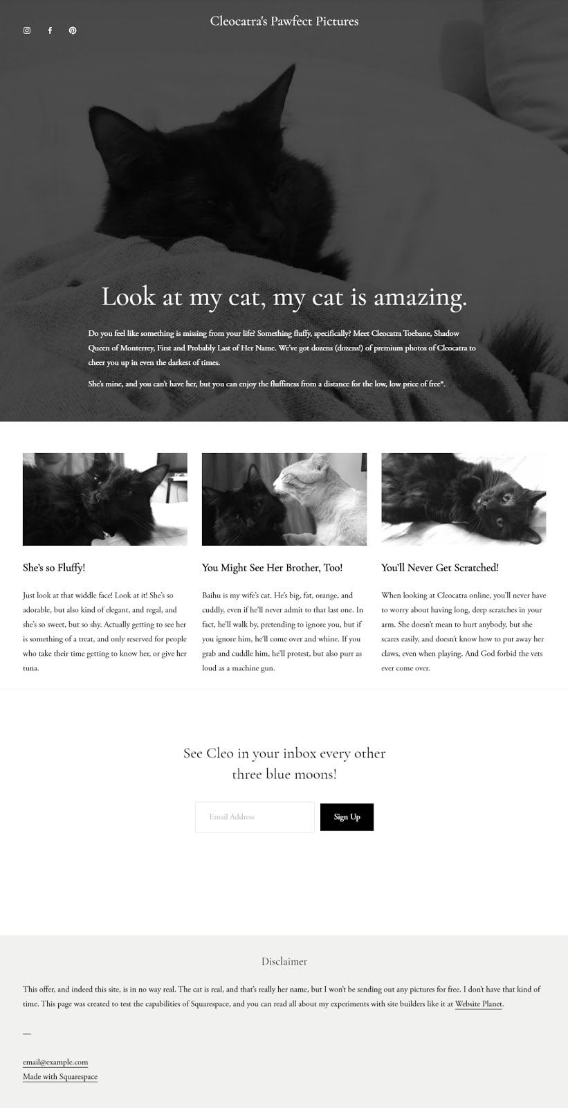 The completed Squarespace site