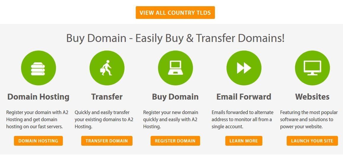 A2 Hosting - domain options