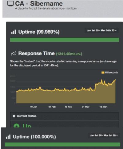 UptimeRobot score SiberName