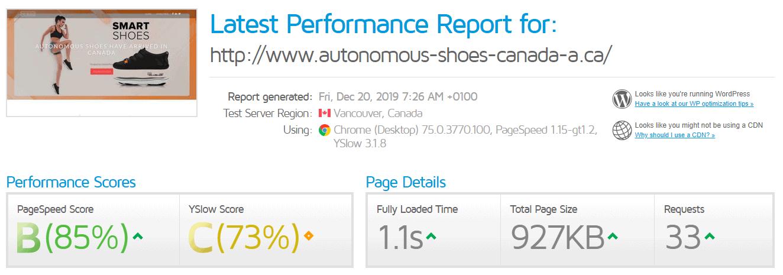 Bluebird Hosting GTmetrix results