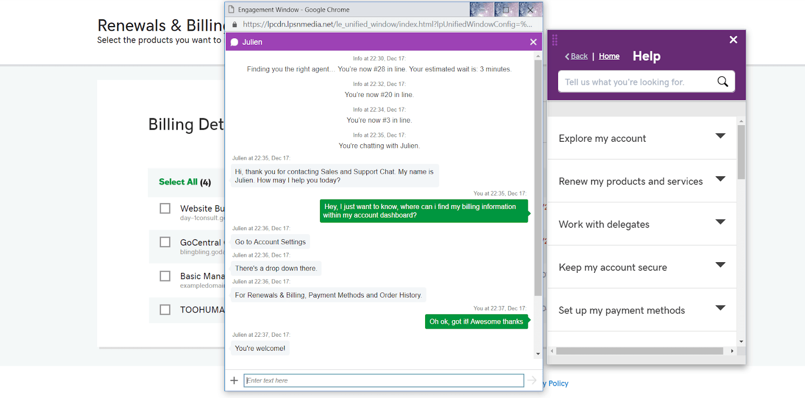 [GoDaddy] - [support chat]