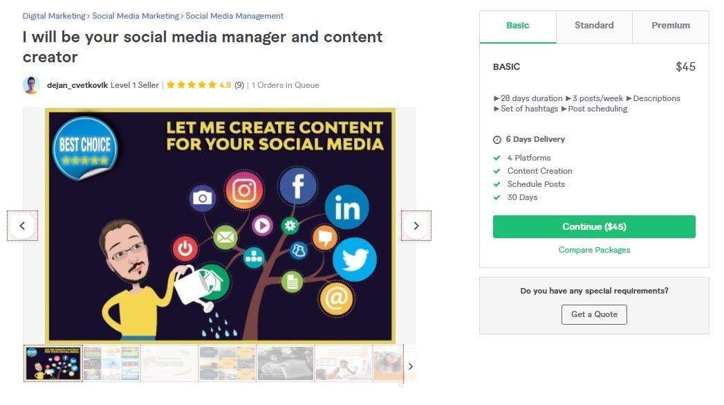 Fiverr screenshot - Dejan_cvetkovik Social Media Manager gig