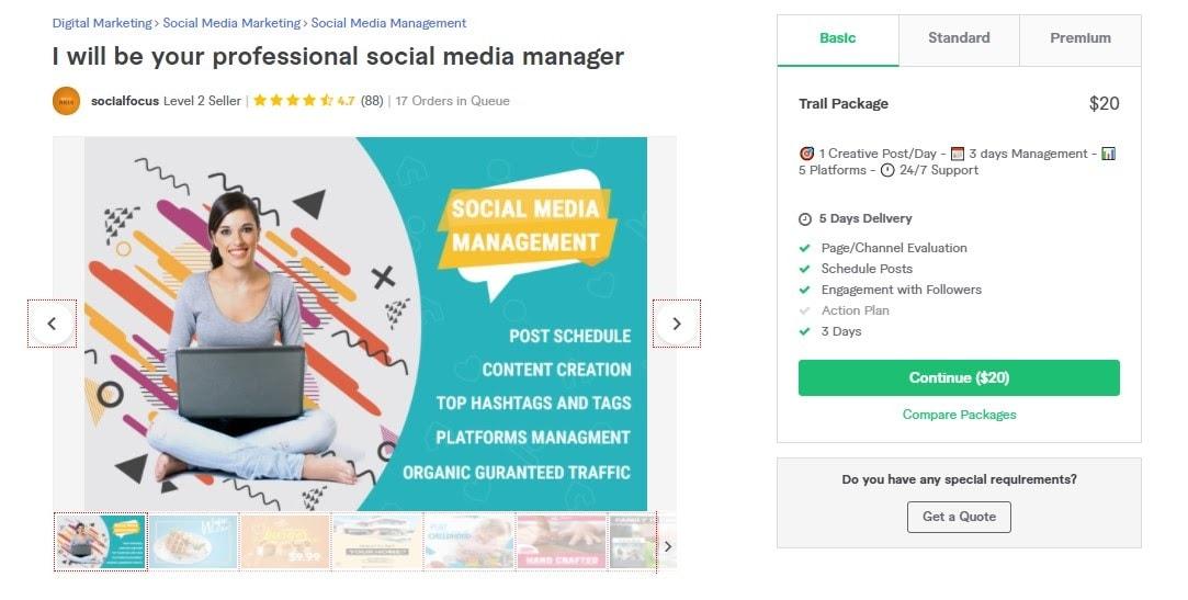 Fiverr screenshot - Socialfocus social media manager gig