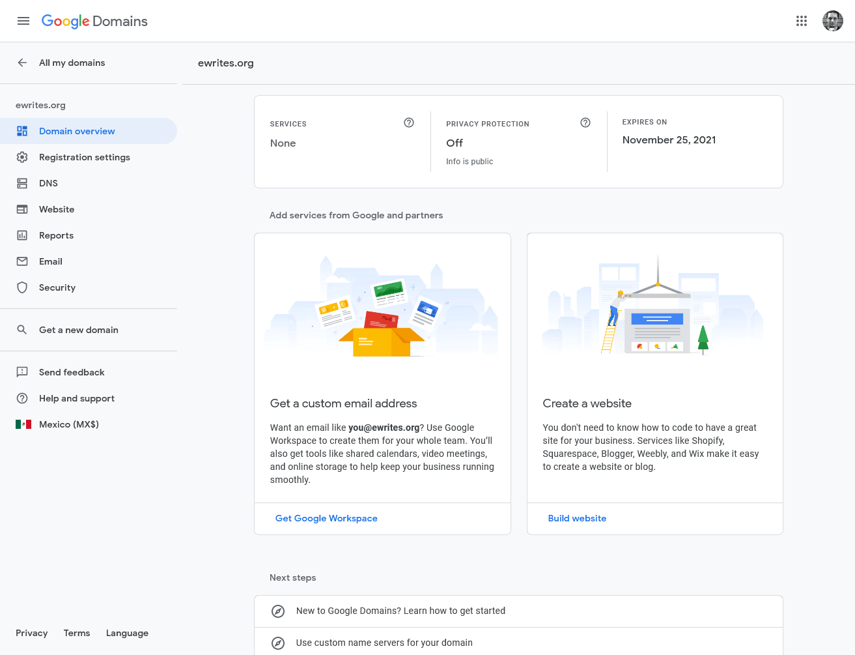 the Google Domains dashboard