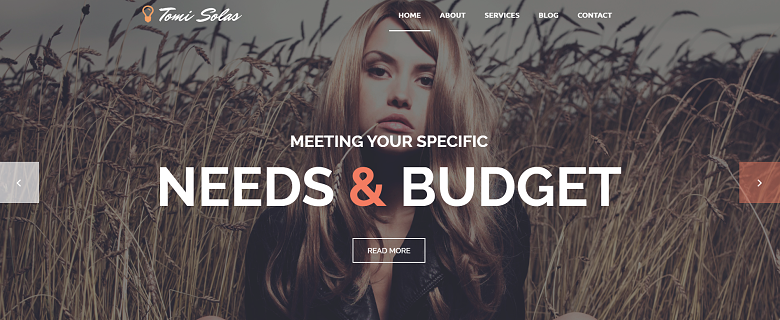WordPress Tomi Solas Theme Homepage